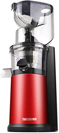 masticating or cold press juicer