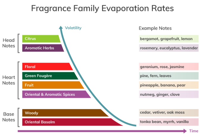 Fragrance family evaporation rates